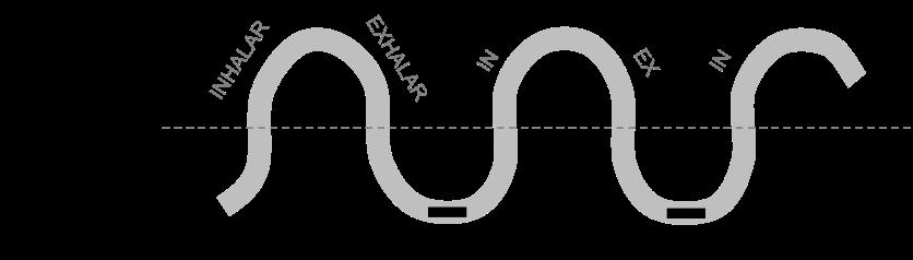 ciclo-respiratorio